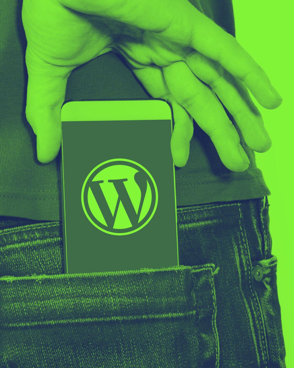WordPress no bolso
